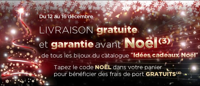 Livraison gratuite et garantie avant Noël